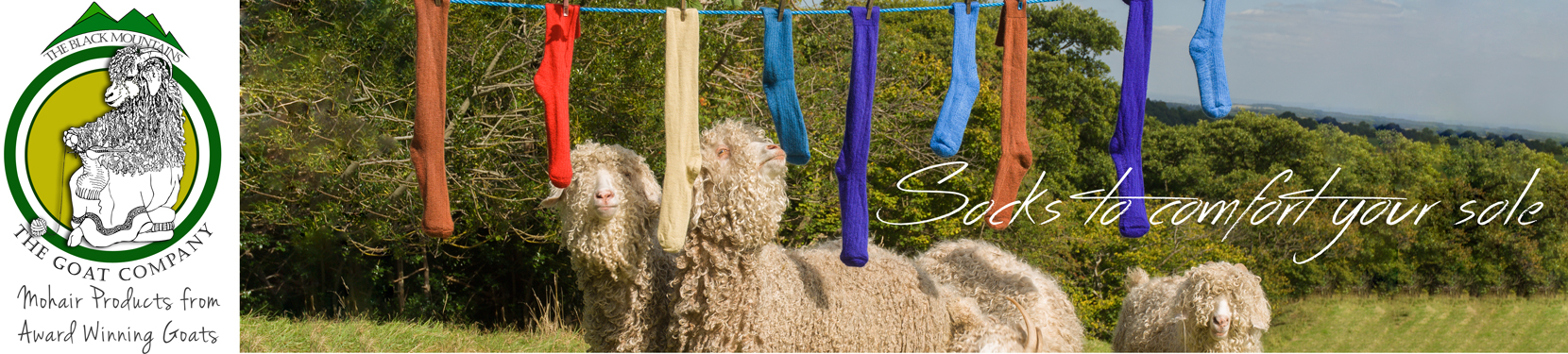 Sustainable Mohair Socks and other products from The Goat Company